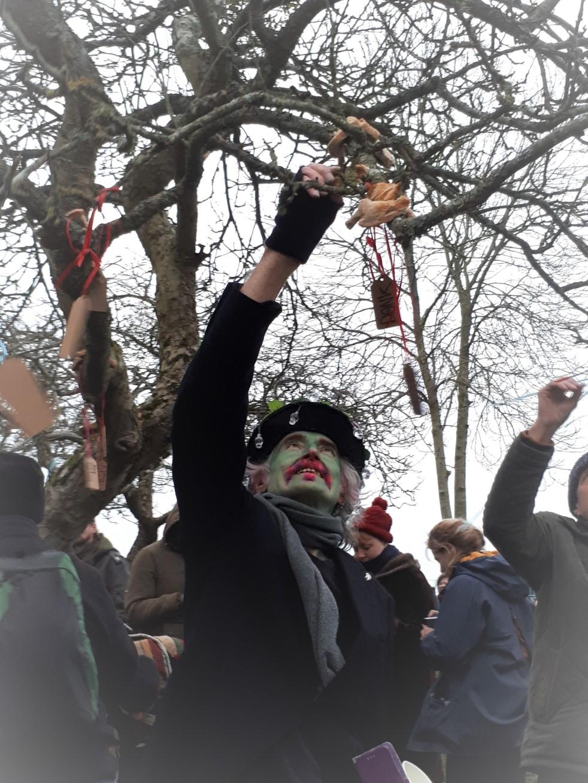 putting toast on tree